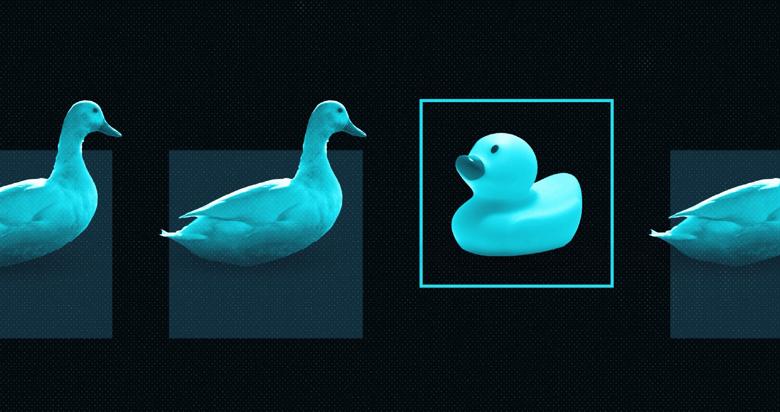 Image of SE duck