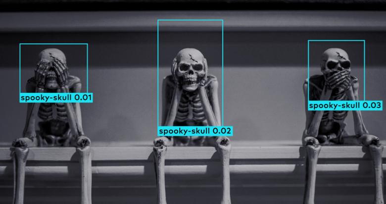 Image of SE skeletons
